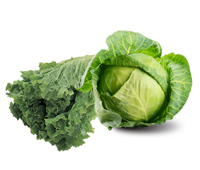 G for Glorious Greens