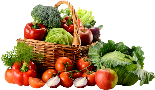 R for Raw Food Diet